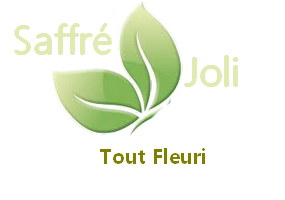 le logo de l'association Saffré Joli